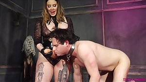 Thick Domme introduces her resulting to her huge phallus